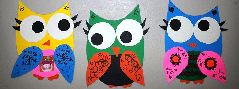 owl invasion