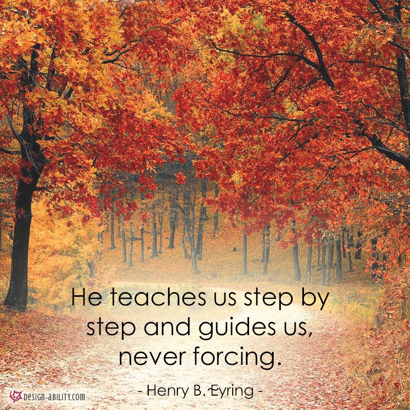He Teaches Us Step By Step