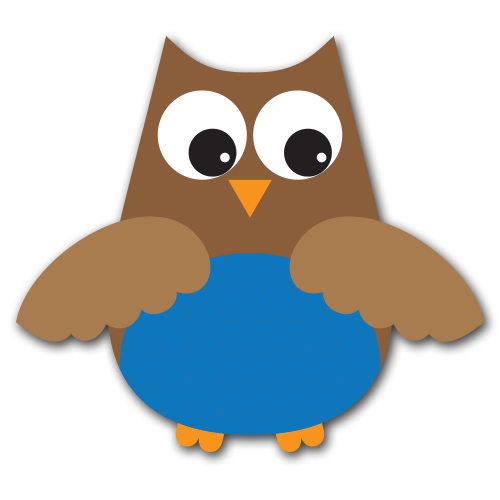 Owl Craft Boy