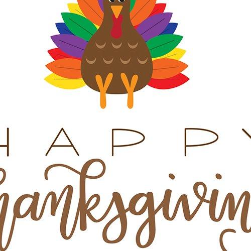 Turkey Sitting on Thanksgiving